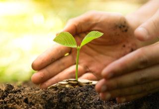 Nieuwsbericht duurzaamheid